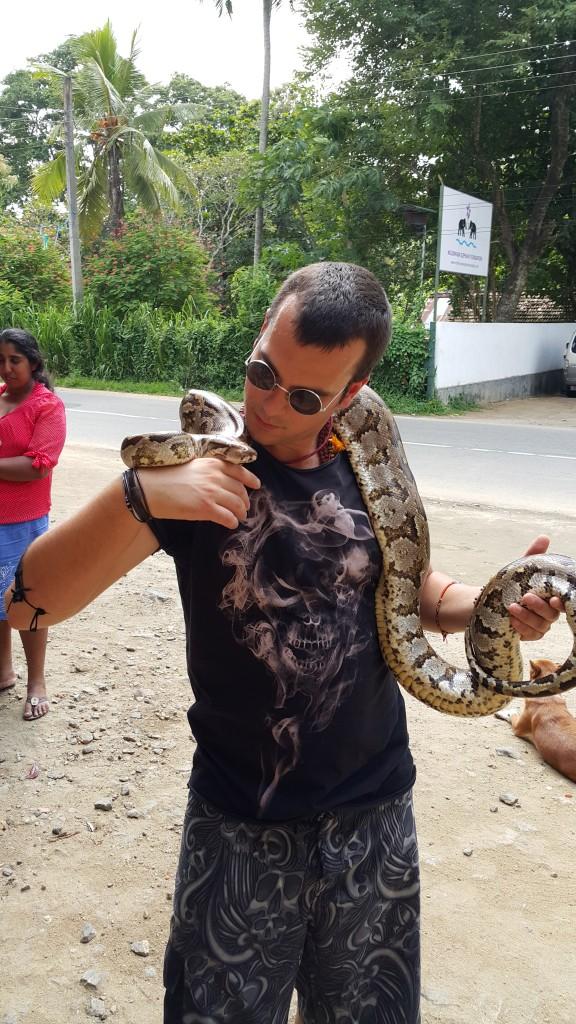 Sri Lanka'da her türlü otantik hayvanla muhattap olmanız mümkün...