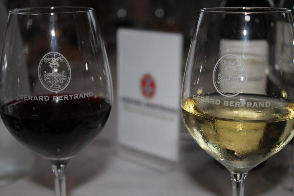 Gerard Bertrand şaraplarının üretildiği Clape platosunda yüzlerce hektar alanlık şarap bağları bulunuyor.