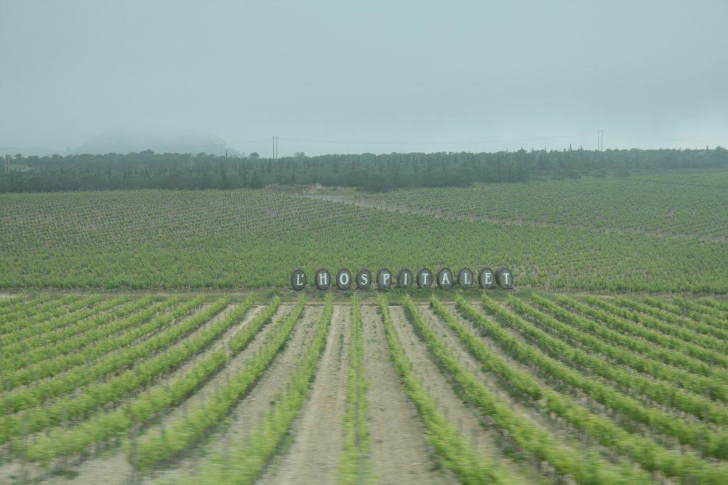 Carcasonne Şarap Bağları